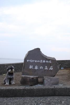 Image2008101801