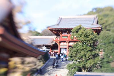 Image2008121602_2